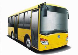 bus_pic1