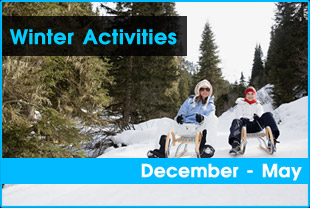 winter_activity_overview