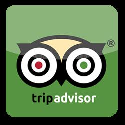 icon- tripadvisor